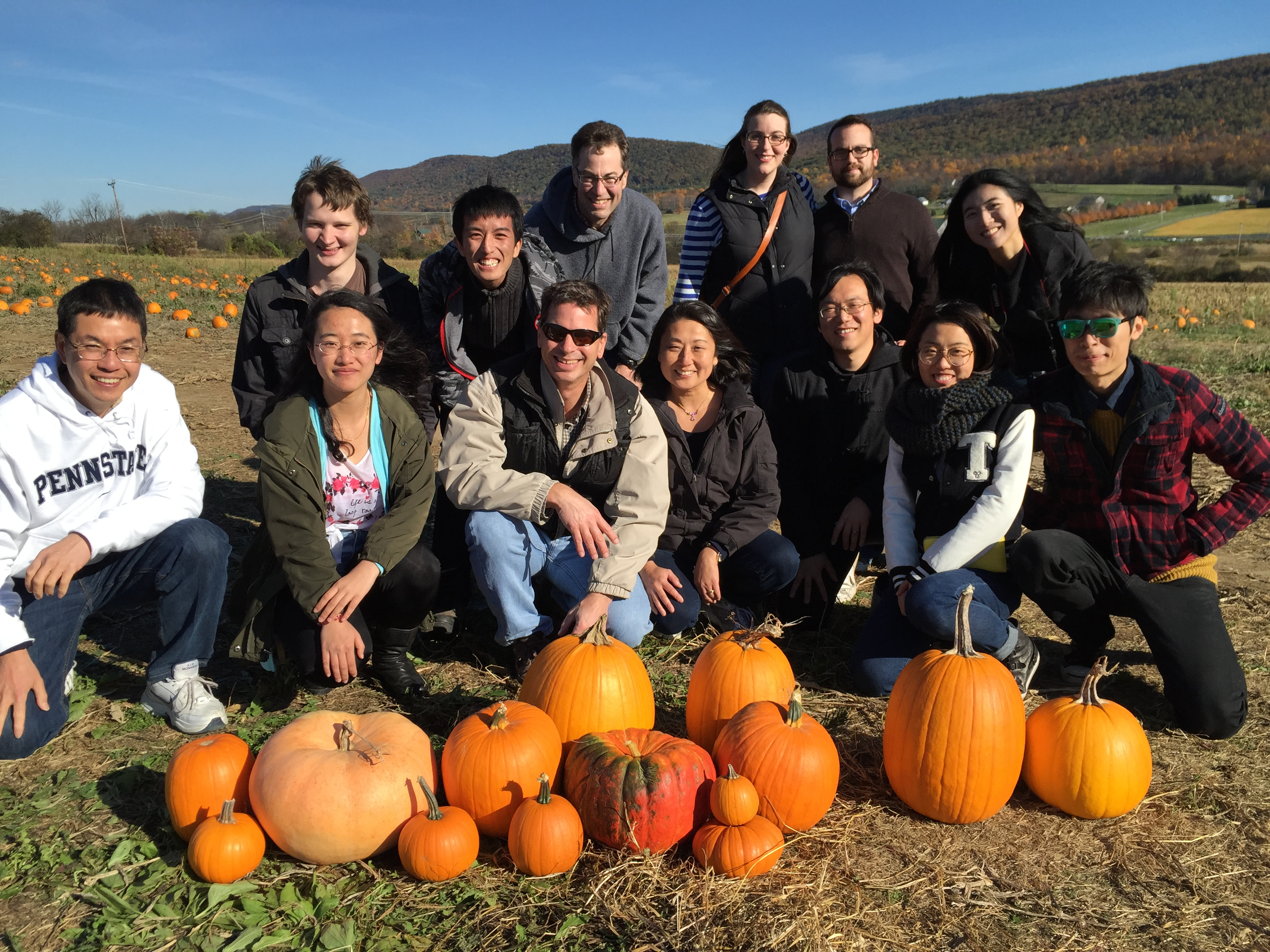Lab Pumpkin Patch